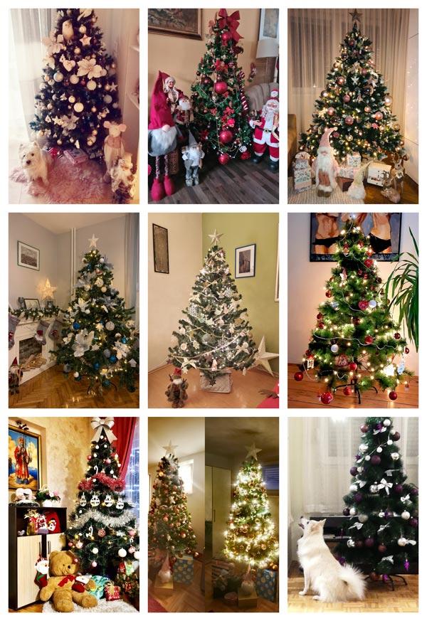 Holiday Tree Contest